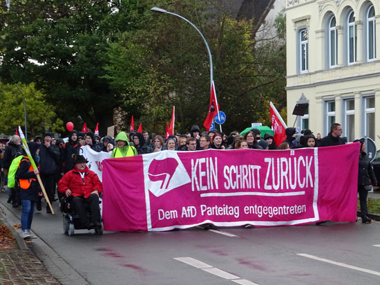 Demo in Oldenburg gegen die AfD